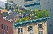 Amazing Rooftop Gardening Idea In New York City : Amazing Rooftop Garden In NY City 7 Seats Table Fence Ideas
