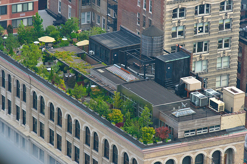 Amazing Rooftop Gardening Idea In New York City : Amazing Rooftop Garden In NY City 8 Seats Umbrella Ideas