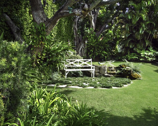 Excellent Landscaping Shaded Areas : Amazing Tropical Landscape Landscaping Shaded Areas Around The Tree Rocks Are Pulled Away To Create The Appearance Of Distance
