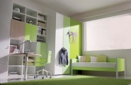 Cool Teenage Girls Bedroom Ideas : Amuzing Green Themed Teenage Girls Bedroom Ideas Modern Bedroom Ideas With Green Sofa And Cloth Cabinet And Green Plastic Carpet