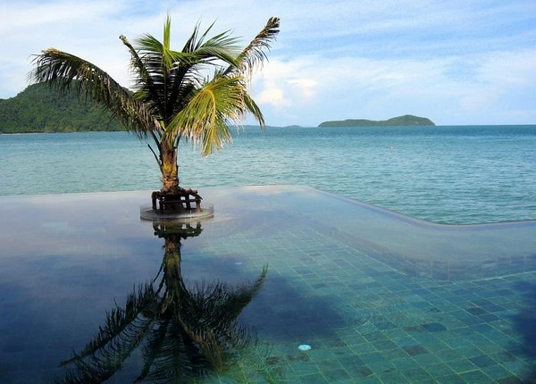 Most Spectacular Infinity Pools Design : Beautiful Bay View Infinity Pool Design With Coconut Tree Ideas