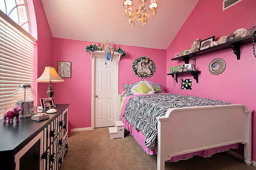 Pink and green girls bedroom ideas : Bold Zebra Comforter Fun Cut Teenage Girl Room