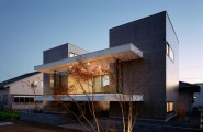 Clean Sleek Minimalist Home Design With Geometrical Shape : Contemporary House With Inspiring Stones Floor Design And Fascinating Ceiling Lights Glass Wall Inspiring Leafless Tree