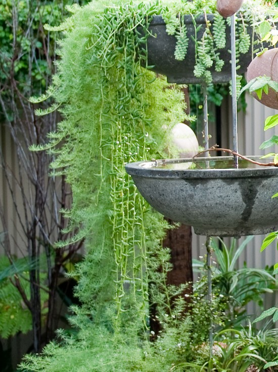 Various Bird Bath Designs: Contemporary Landscape With Suspended Terrazzo Bowls Are Planters As Well As Water Features Birds To Bathe And Drink