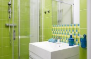 Awesome Bathroom Design For Small Apartment : Cool Green Color Small Apartment Bathroom Interior Design With Open Shower And Washbasin And Mirror With Tile Wall And Tile Flooring Ideas