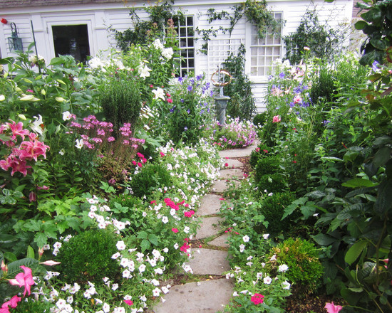 Greatest Cottage Garden Plants : Cottage Garden Style Traditional Landscape Mostly White Blue And Yellow