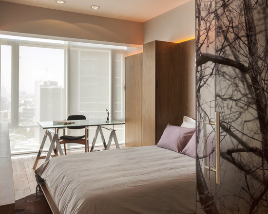 Cozy Fold Down Beds For Small Spaces: Eclectic Bedroom The Patterned Glass And Murphy Bed And The Sliding Glass Panel With Bed That Folds Into Wall ~ stevenwardhair.com Bed Ideas Inspiration