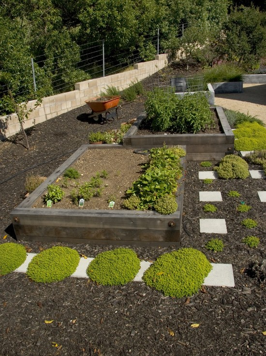 Timber For Captivating Raised Beds: Eclectic Landscape Aised Garden Bed With Wood Cool Looking Practicle Layout