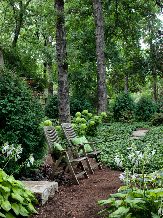 Excellent Landscaping Shaded Areas : Enchanting Traditional Landscape Landscaping Shaded Areas Garden But What Evergreens Are Doing So Well Woodland Privacy