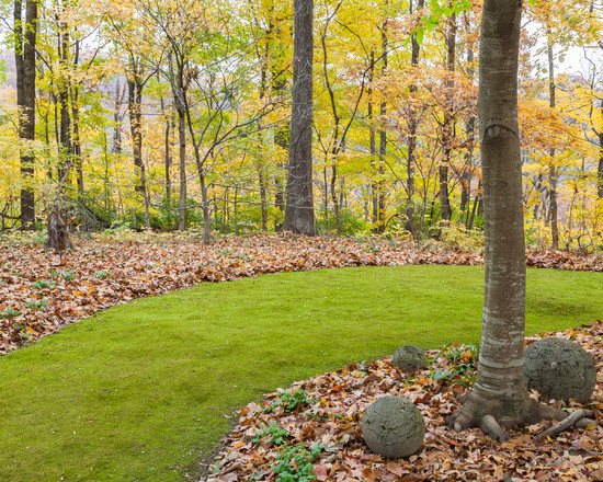 Excellent Landscaping Shaded Areas : Exciting Traditional Landscape Landscaping Shaded Areas Low Growing Habit Eliminates The Need For Mowing And The Texture Of Mosses