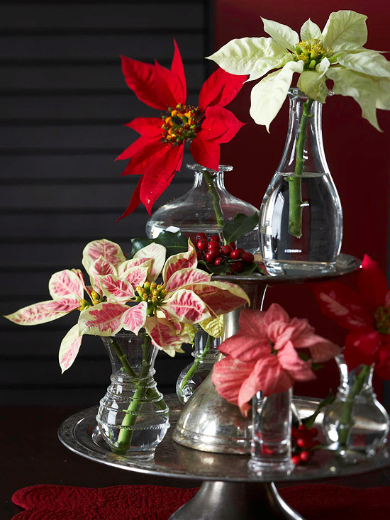Gorgeous Holiday Table Arrangements: Gorgeous Holiday Table Arrangements New Take On A Trademark An Artful Arrangement Of Poinsettias And Colorful Bracts In Small Bud Vases On A Tiered Tray
