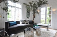 The Right Kind Of Tree Trunk Coffee Table : Inspiring Contemporary Living Room Tree Trunk Coffee Table Seems Like The Trees Might Be A Bit Light Constrained Though Inside Pine Trees Cope With Very Nearly Anything