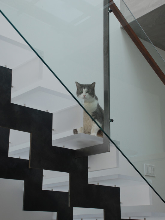 Use Contemporary Cat Trees For Your Beautiful And Cute Home Decoration: Outstanding Modern Staircase Contemporary Cat Trees The Steps Prevent Cats From Falling Still Miffed About That Store Brand Cat Food  ~ stevenwardhair.com Design & Decorating Inspiration