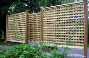 Wonderful Lattice Screen Designs : Portland Patio Traditional Exterior Privacy Lattice Fence Add Clematis