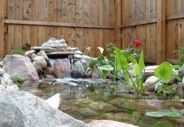 Stunning Relaxing Garden And Backyard Waterfalls : Small And Clear Stone Pond Using Rocks And Boulders Placed Strategically To Create A Small Stream With Green Fresh Water Vegetation