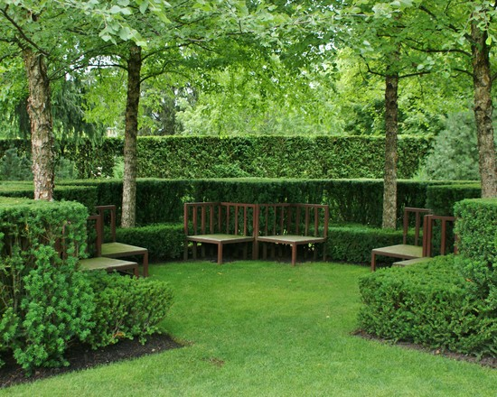 Surprising Good Trees For Privacy : Traditional Landscape Good Trees Formal Hedges Provide A Decorative Touch Or Privacy