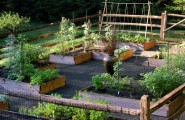 Simple Vegetable Garden Fencing ideas : Traditional Landscape Healthy Vegetable Garden Raised Beds Were Built And Filled With Organic Soil And Leaf Mold Covered By Wood And Wire Fence