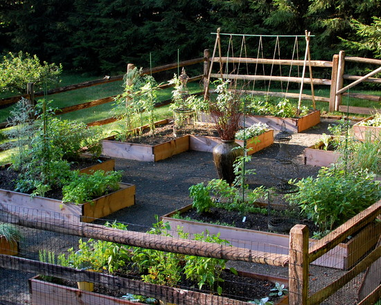 Simple Vegetable Garden Fencing ideas: Traditional Landscape Healthy Vegetable Garden Raised Beds Were Built And Filled With Organic Soil And Leaf Mold Covered By Wood And Wire Fence