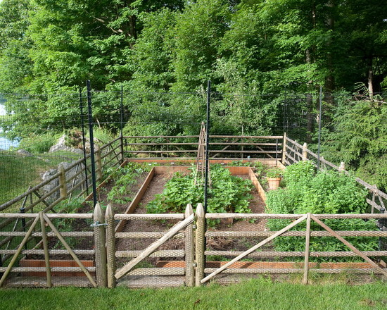 Simple Vegetable Garden Fencing ideas: Traditional Landscape Vegetable Garden With Deer Fencing For Protection Custom Fabrication ~ stevenwardhair.com Exterior Design Inspiration