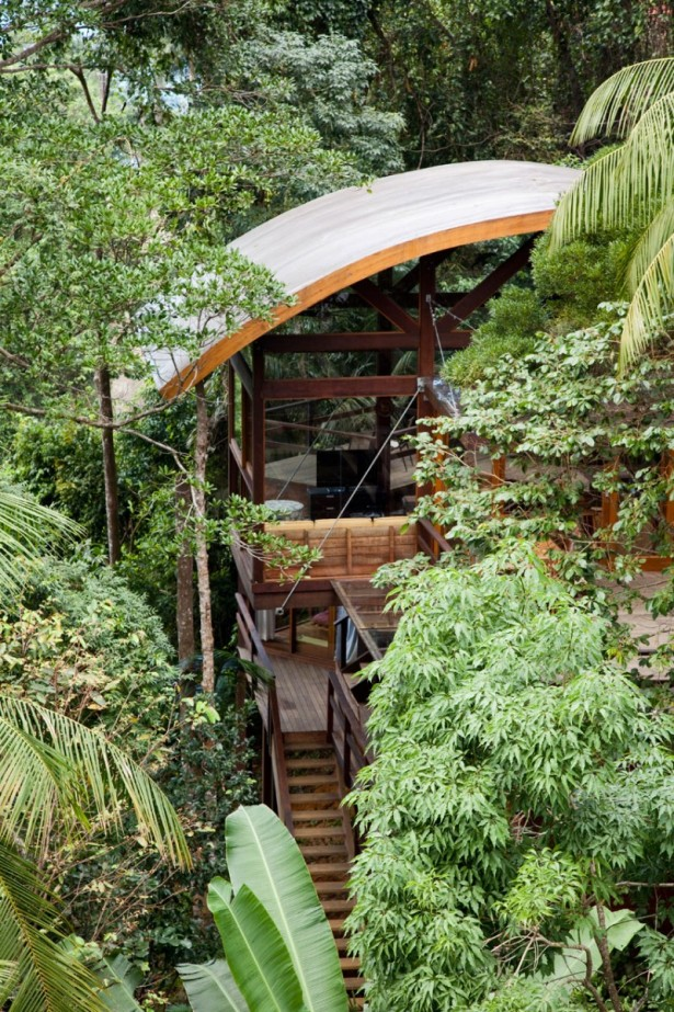 Unusual Wild Nature and Cool Modern Home Designs on Tropical Forest: Unusual Wild Nature And Cool Modern Home Backyard Designs With Large Glasses Window Round Ceiling Trees Wooden Stairs Nature Atmosphere ~ stevenwardhair.com Design & Decorating Inspiration