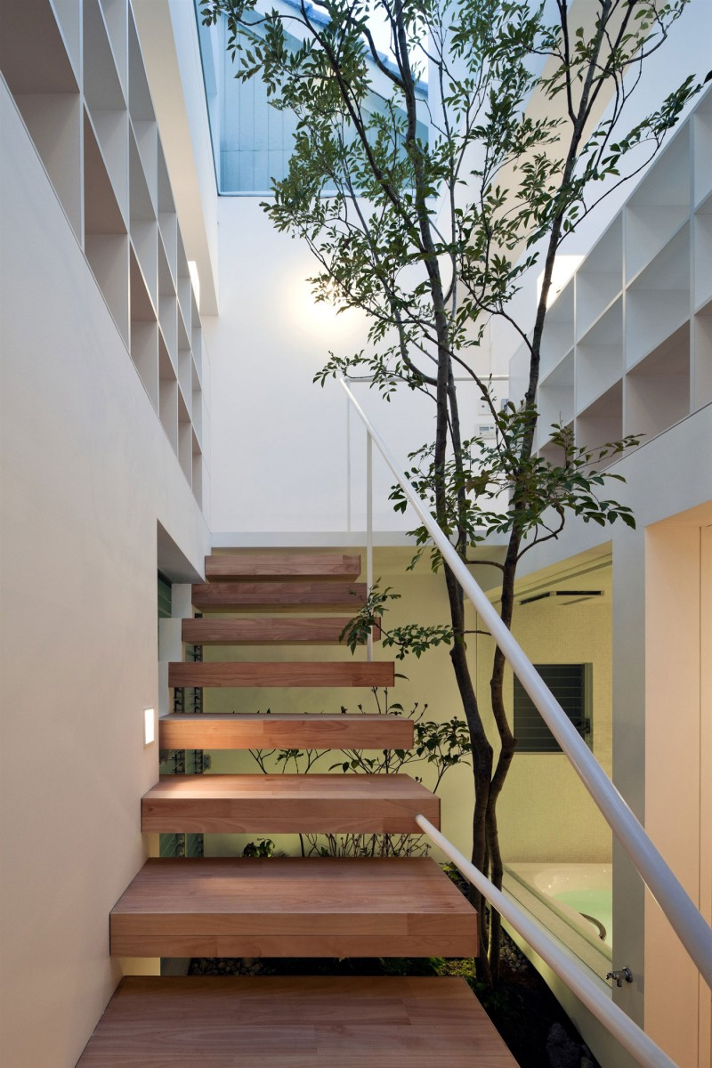 Pleasurable Home Design Ideas in Rural Area For You: Wooden Indoor Staircase White Wall Tree Indoor Garden Glasses Ceiling
