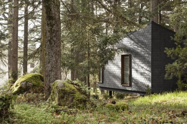 Creative Hut With Modern Style : A Door Connecting The Trees With The Modern Interior In A Prefab Hut