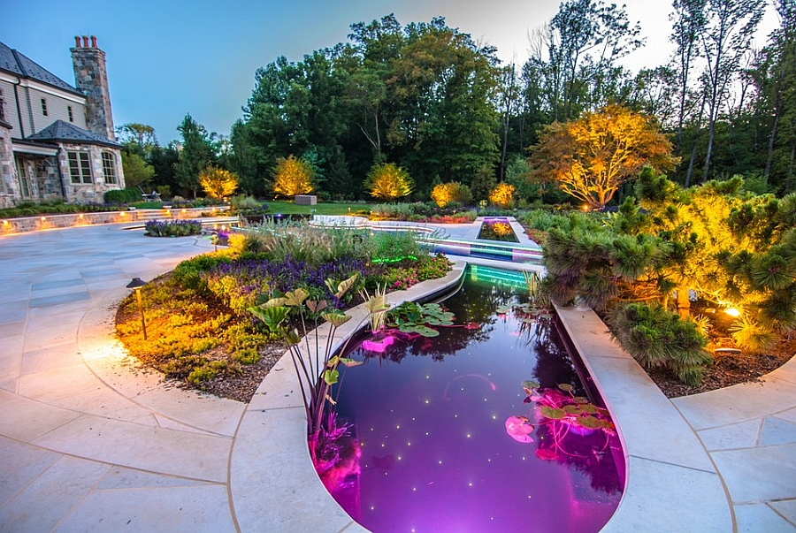 Extravagant Swimming Pool Resembling Violin Shape : Beauiful Koi Pond Next To The Pool With LED Lighting