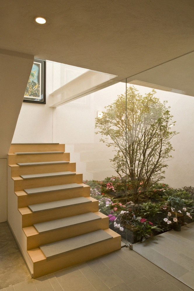 Perfect Courtyard Design For Our House: Beautiful Indoor Garden Beside Staircase Wonderful Interior Courtyard Design