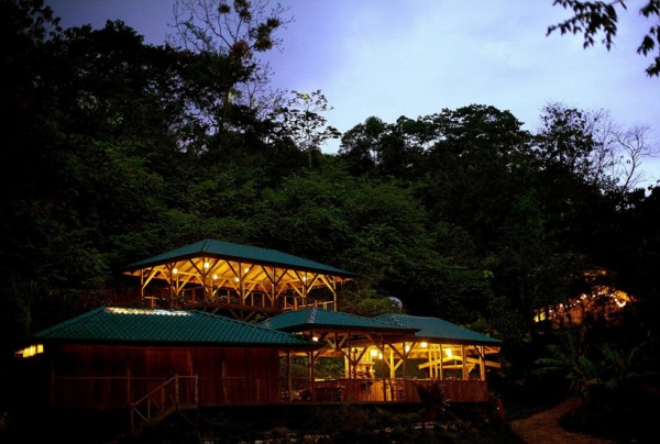 Exceptional Tree House In Tropical Forest Of Costa Rica: Beautiful Scenery At Dusk Sustainable Treehouse Community Environment