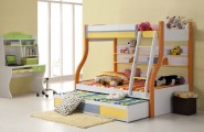 Children's Bunk Beds Safety Rules : Bunk Beds For Kids Design Ideas