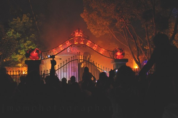 Halloween Light Effect Idea For The Halloween Event: Cemetery Scene With Fog And Orange Lighting ~ stevenwardhair.com Tips & Ideas Inspiration