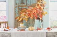Cool Modern Furniture With Shabby Tulip Tables And Chairs : Colorful Autumn Table Setting With Rustic Furniture Design Ideas