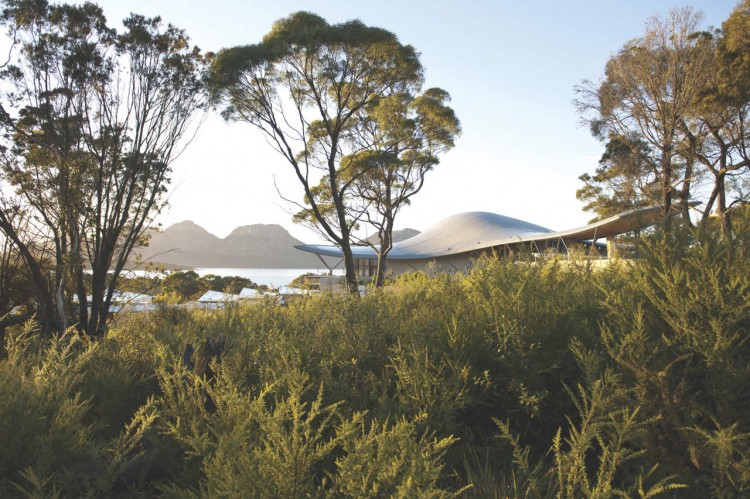 Fabulous Resort Design For Weekend Holiday: Crisp View In The Daylight In The Saffire Resort With Trees