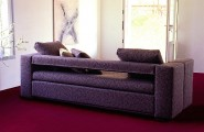 9 Pictures Of Surprising Bed Designs : DOC XL Sofa Bunk Bed