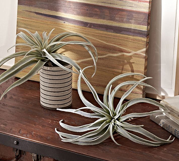 Easter Furnishing For Welcoming Prettiness Of The Spring: 21 Striking Images: Faux Tillandsia