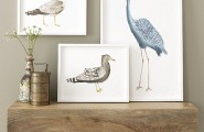 Beautiful Mother`s Day Gift Bring The Warmth To The Heart : Framed Bird Wall Art
