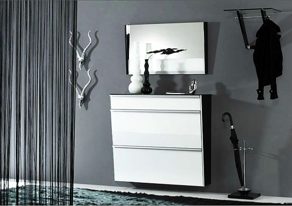 Fashionable Cabinet Designs For Your Shoe Collection: Glossy Shoe Cabinets