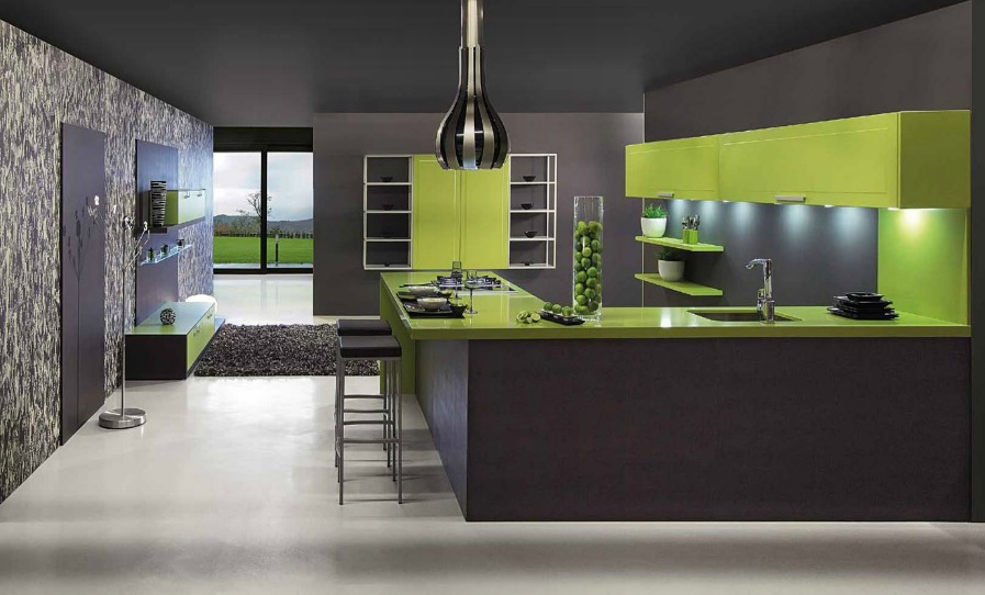 gallery classy design ideas. Classy Kitchen That Make The Cut: Modern Version : Green Gray Scheme Gallery Classy Design Ideas I