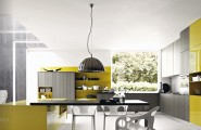 Contemporary Kitchens With Exceptional Ideas : Grey Mustard Yellow Modern Kitchen
