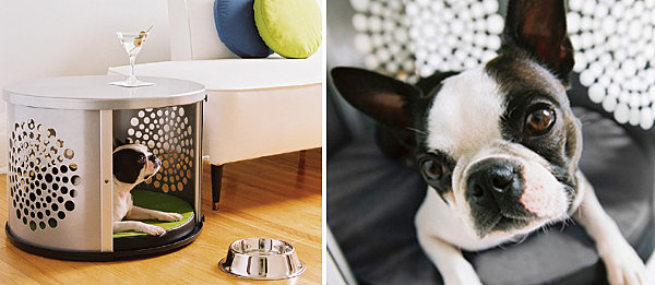 Unique Stylish Pet Furniture And Accessories (20 Pictures): Metal Dog House And Side Table