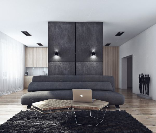 Sleek Studio Room Ideas You Need To Know : Minimalist Bachelor Pad Exudes Style