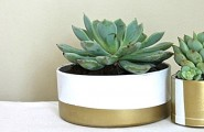 Cute Succulent Decoration As Easy To Care Planter For Your Home : Powerful PVC Pipe Succulent Planters With Gold And White Color Design Ideas