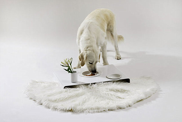 Unique Stylish Pet Furniture And Accessories (20 Pictures) : Room Service Tray Dog Food Bowls