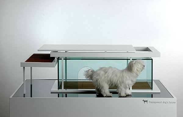 Unique Stylish Pet Furniture And Accessories (20 Pictures) : Transparent Dog House