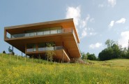 Extraordinary Minimalist Wood House Around Natural Environment : Yellow Plants In Garden In The Back Home Yard