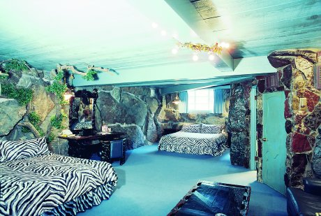 Zebra Print Bedroom Ideas For Girls : Zebra Print Bedroom Theme